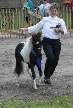 Monty vinner sin klass på Storfors Fair 2012
