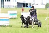 Nubia och Cookie vid Drive & Ride Mälardalens tävling i Sportkörning 16 juni 2019.