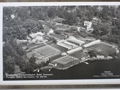 Flygfoto över Ensjöholms handelsträdgård 1954