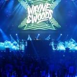 Wayne & Woods20