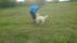 valp&unghund - 4