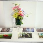 GalleriZoo-2014-Ann Charlotte Photography-®-17