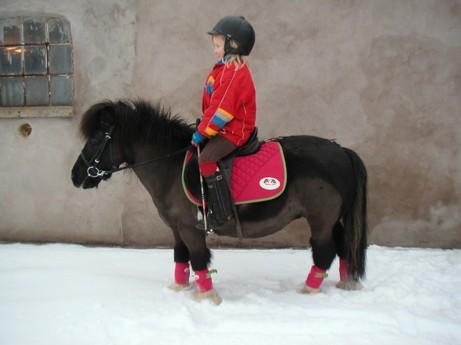 Mon Amie januari 2010