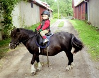 Mon Amie 2006