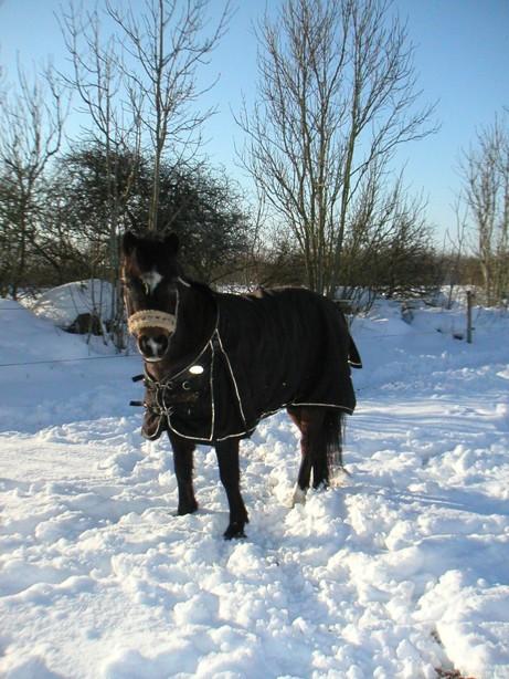 Mirakel Spektakel ute i snön! Brrr