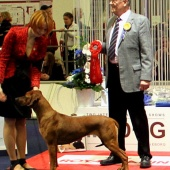 Charena Best of Breed