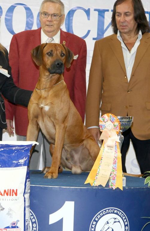 """Kandy at """"rossia-2009"""" int. dog show"""