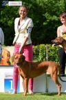 Duba winning open class female (16 entries) in very hot Belgium club match RR