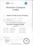 diplome german champion Lisi