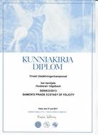 diplom finland