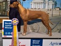 Hulda junior Nordic Winner-17
