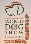 WDS-13 logo