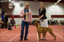 Lisi - best puppy i breed int Vaxjö 2013