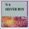 6 silver boy