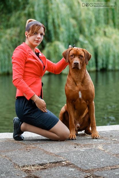Royce is best of breed Växjö 2019