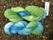 Garnlycka. Merino, Grönt med lite blått & Blått med lite grönt