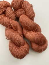 Carrot, new merino