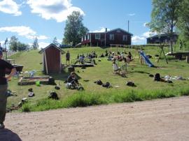 Niorna från Smedbergsskolan har gått runt sjön och tar här en paus i Närsen. En fin tradition!