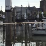 Utsikt Dordrecht