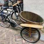 Vinhandlarns cykel