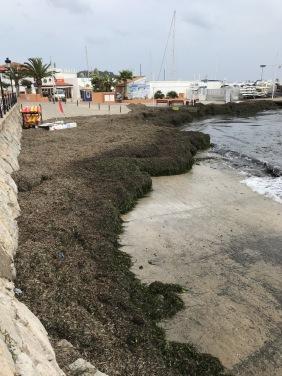 Stranden efter stormen