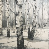 Birches in snow 60x76cm