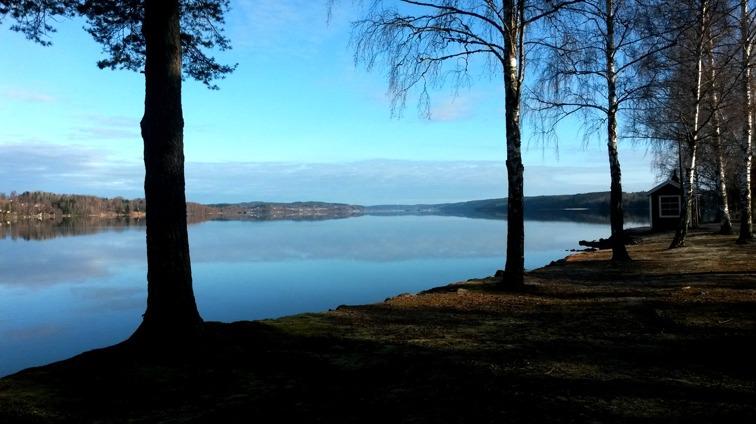 Vårmorgon vid sjön Nedre Fryken