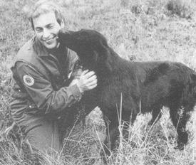 Klubbens första ordförande Stig Olsson tillsammans med sin Cosy, SJCh IntUCh NordUCh Gunhills Gallant Girl (Charmören 1/78).