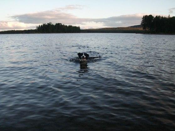 Den lilla badkrukan badar iallafall i sjön vid stugan.