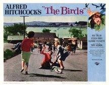 Fåglarna lobby 1