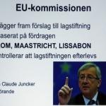 12-PhVet EU