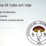 01-PhVet Svamp