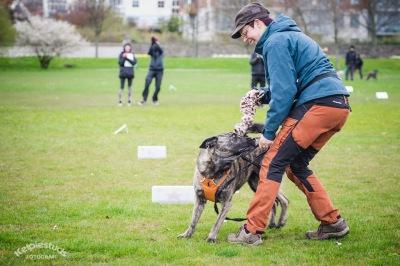 Jag och Ziggie tävlar i M I X X A på hundhallens dag. Foto: Åsa Jacobsson