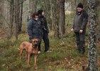Buster, Charlie & Shila MH 168
