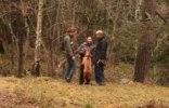 Buster, Charlie & Shila MH 438