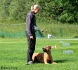 Dando competing 9 years 1 month old