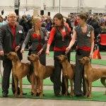 breedersgroup2
