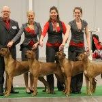 breedersgroup3