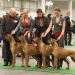 breedersgroup4