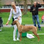 arsta_kayla2
