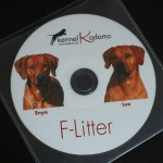 f-litter_skivor