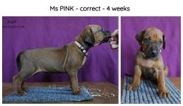 4weeks-pink