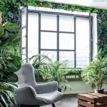 Växtvägg med konserverade växter