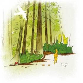 HiQ_skogen