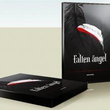 fallen-box