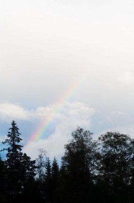 Regnbågen visade sig