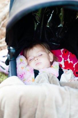 Nova sov hela tiden vi var i skogen.