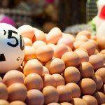 En massa ägg.
