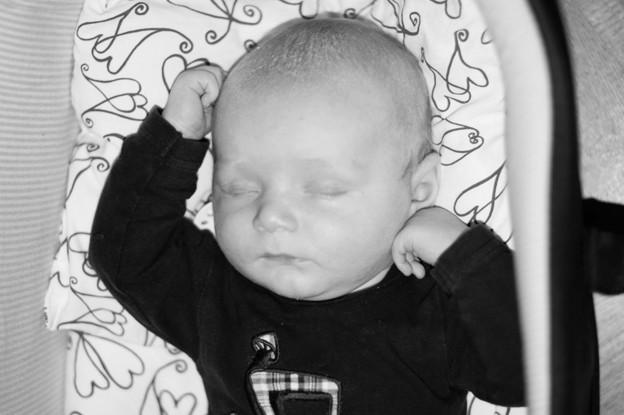Lille Gustaf.