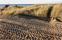 Haverdal Gru00E4vning i naturreservat 141130sony1881